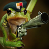 Nuclear_Frog