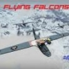 =MF221= Fighting Falcons - last post by ElectricSquirrel