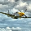 Ultimate P-51D Mustang Guide by Kenntheman - last post by Kenntheman